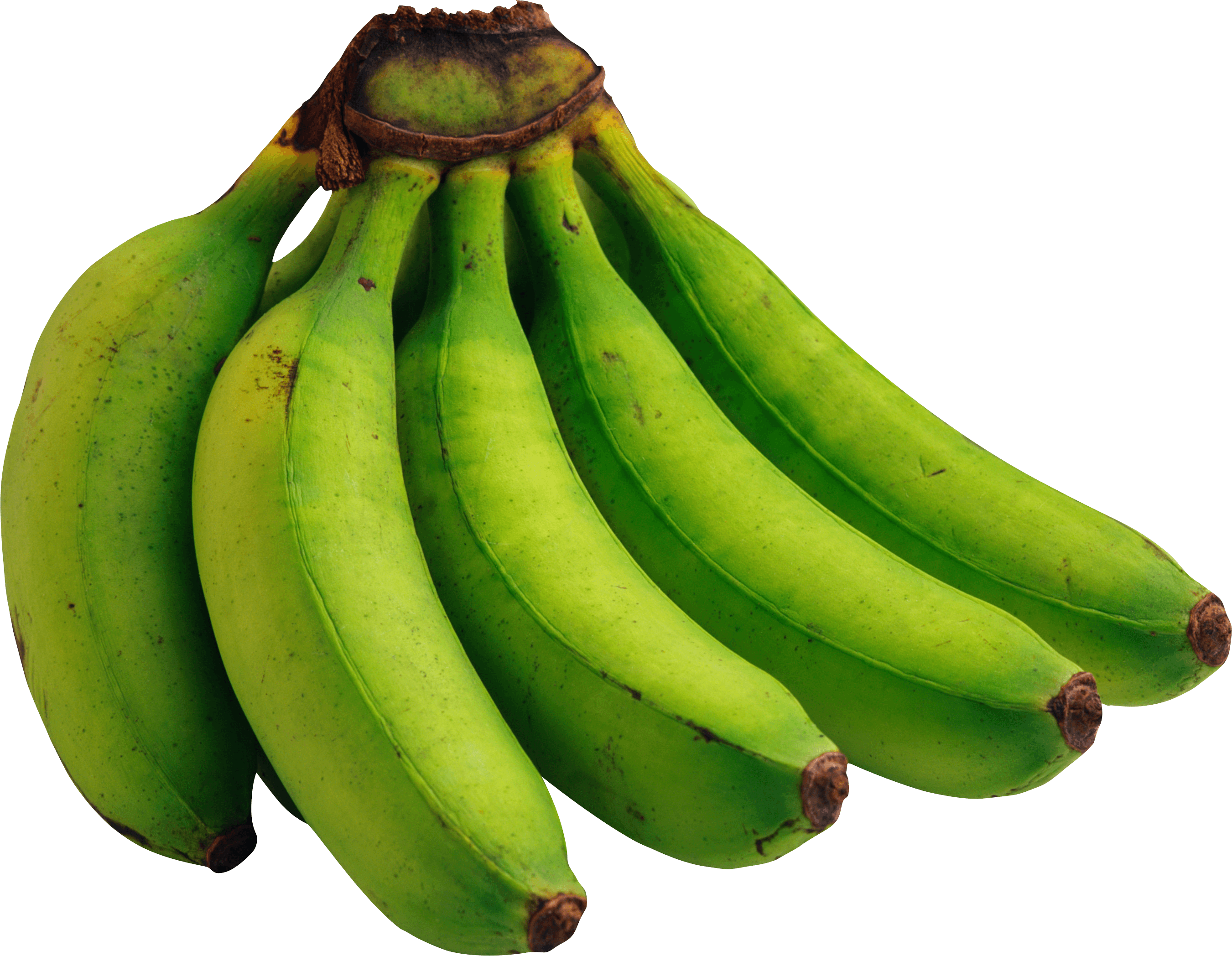 Download Green Bananas Png Image Picture Hq Png Image Freepngimg Are you searching for banana png images or vector? green bananas png image picture