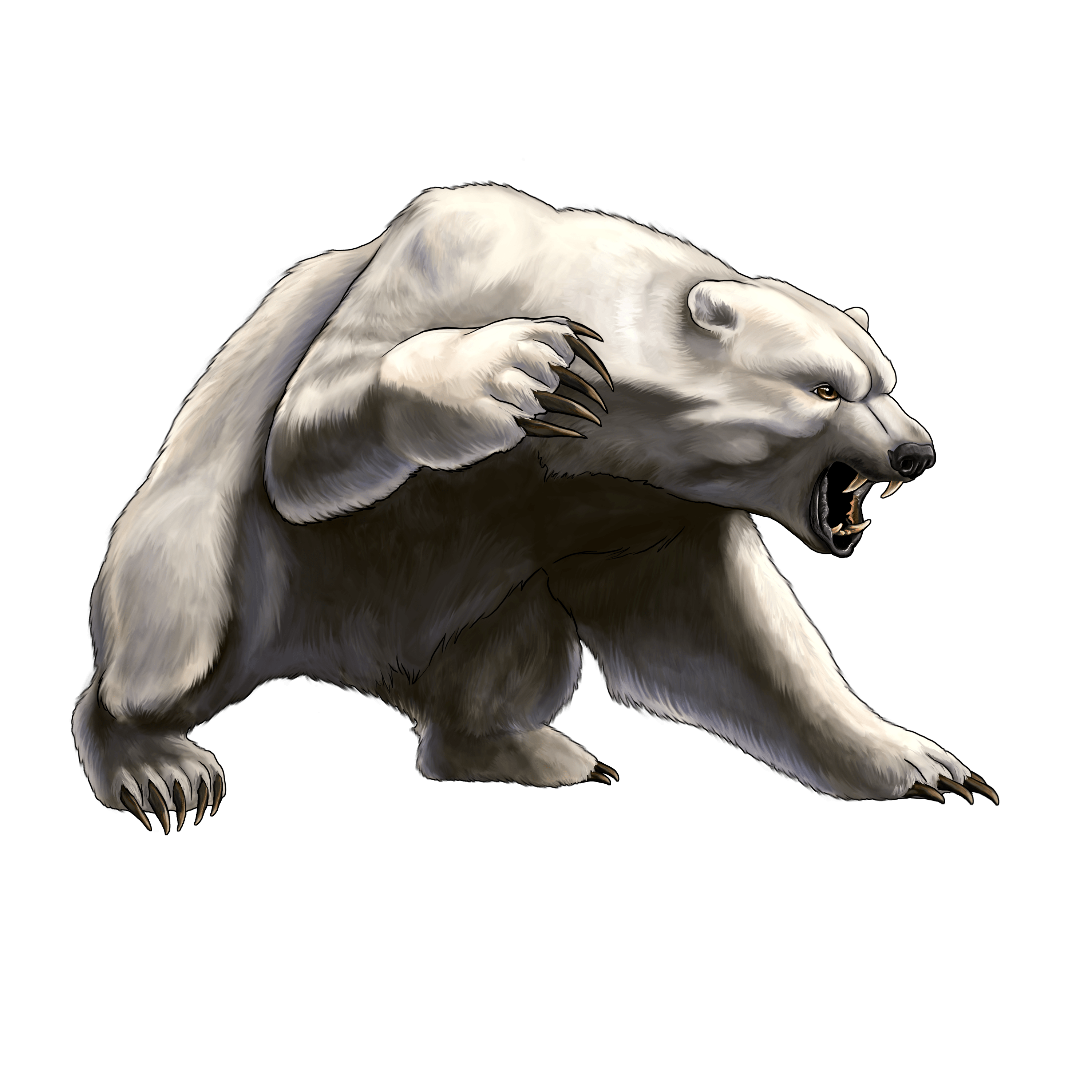 White Angry Bear Png Image PNG Image