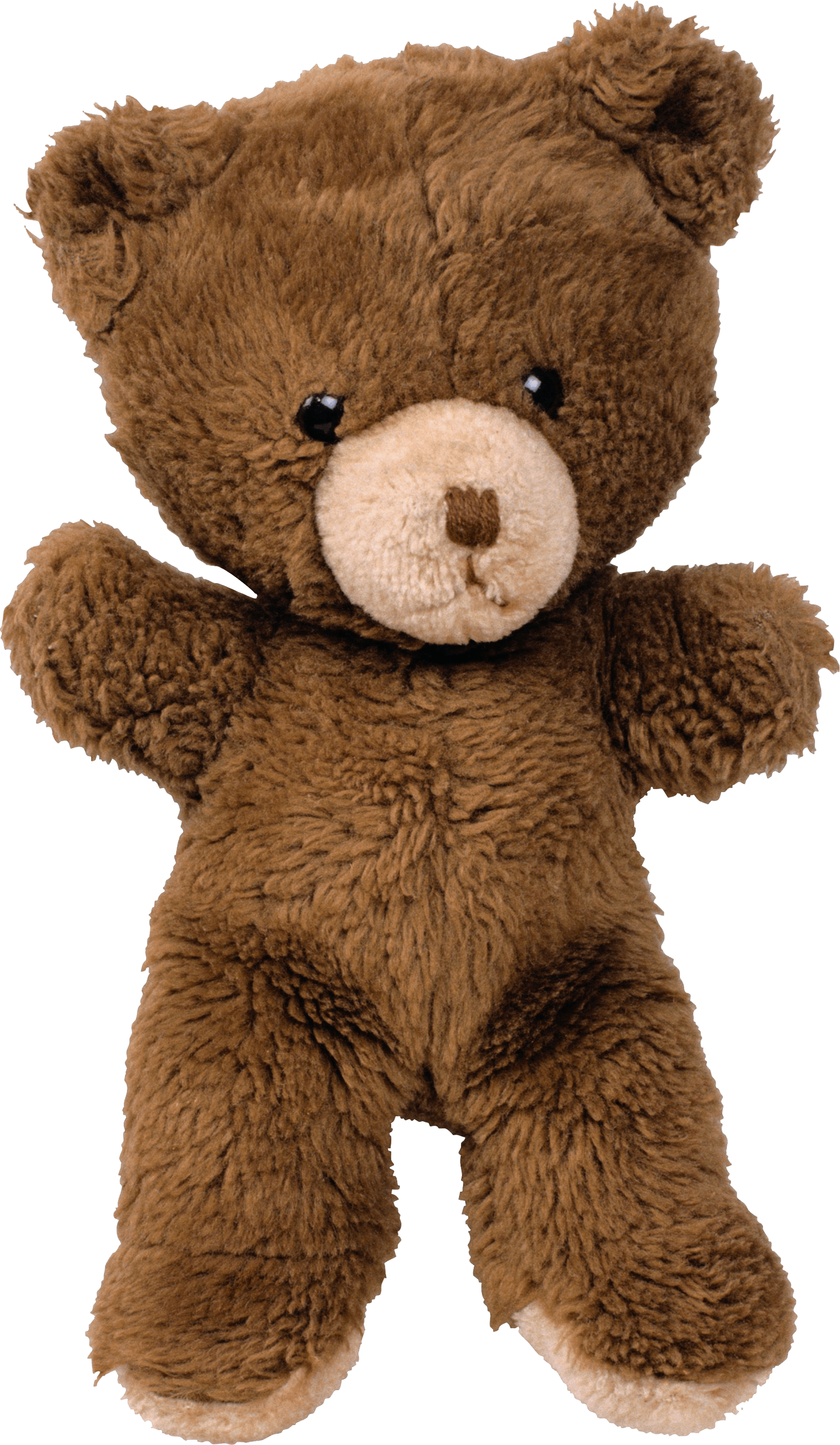 Toy Bear Png Image PNG Image