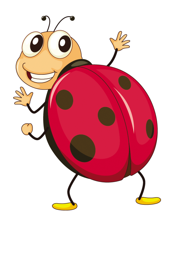 Butterfly Ladybird Insect Fruit Cartoon HD Image Free PNG PNG Image