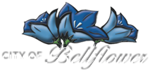 Bellflower Transparent PNG Image