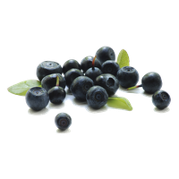 Berries Transparent Background PNG Image