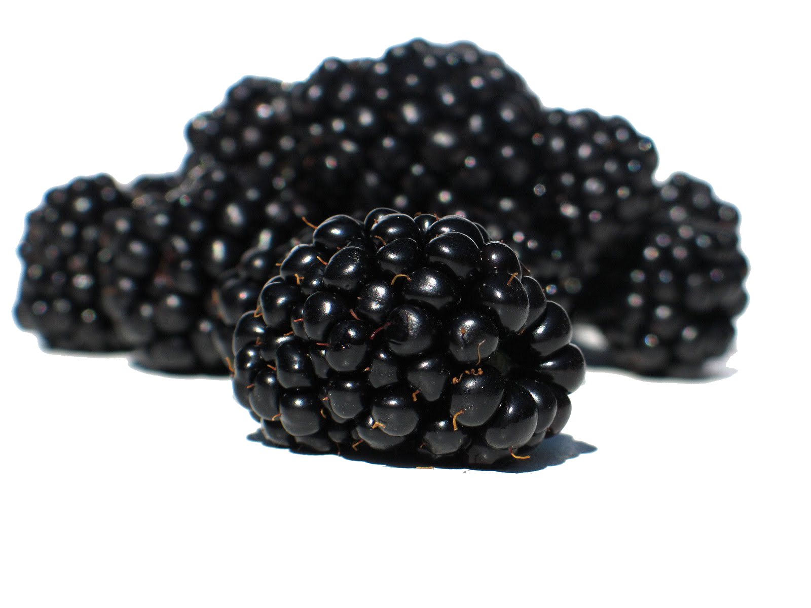 Blackberry Fruit Png PNG Image