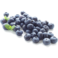 Blueberry Clipart PNG Image