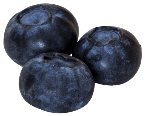 Blueberry Picture PNG Image