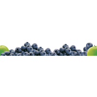 Blueberry Transparent Image PNG Image