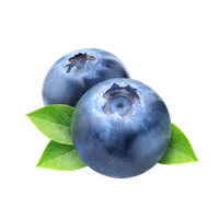 Blueberry Photos PNG Image