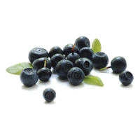 Blueberry Transparent Background PNG Image