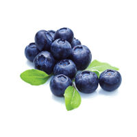 Blueberry File PNG Image