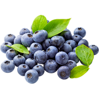 Blueberry Free Download PNG Image