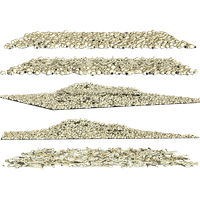 Bones Picture PNG Image