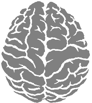 Brain Png Clipart PNG Image