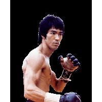 Download Bruce Lee Png Clipart HQ PNG Image | FreePNGImg