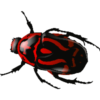 Red Insect Bug Png Image PNG Image