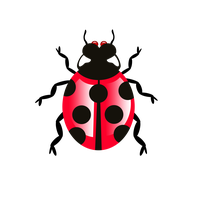 Bug Icon Transparent PNG Image