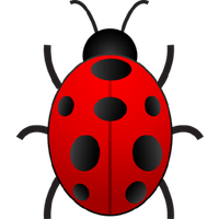 Bug Png 2 PNG Image