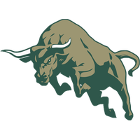 Bull High-Quality Png PNG Image