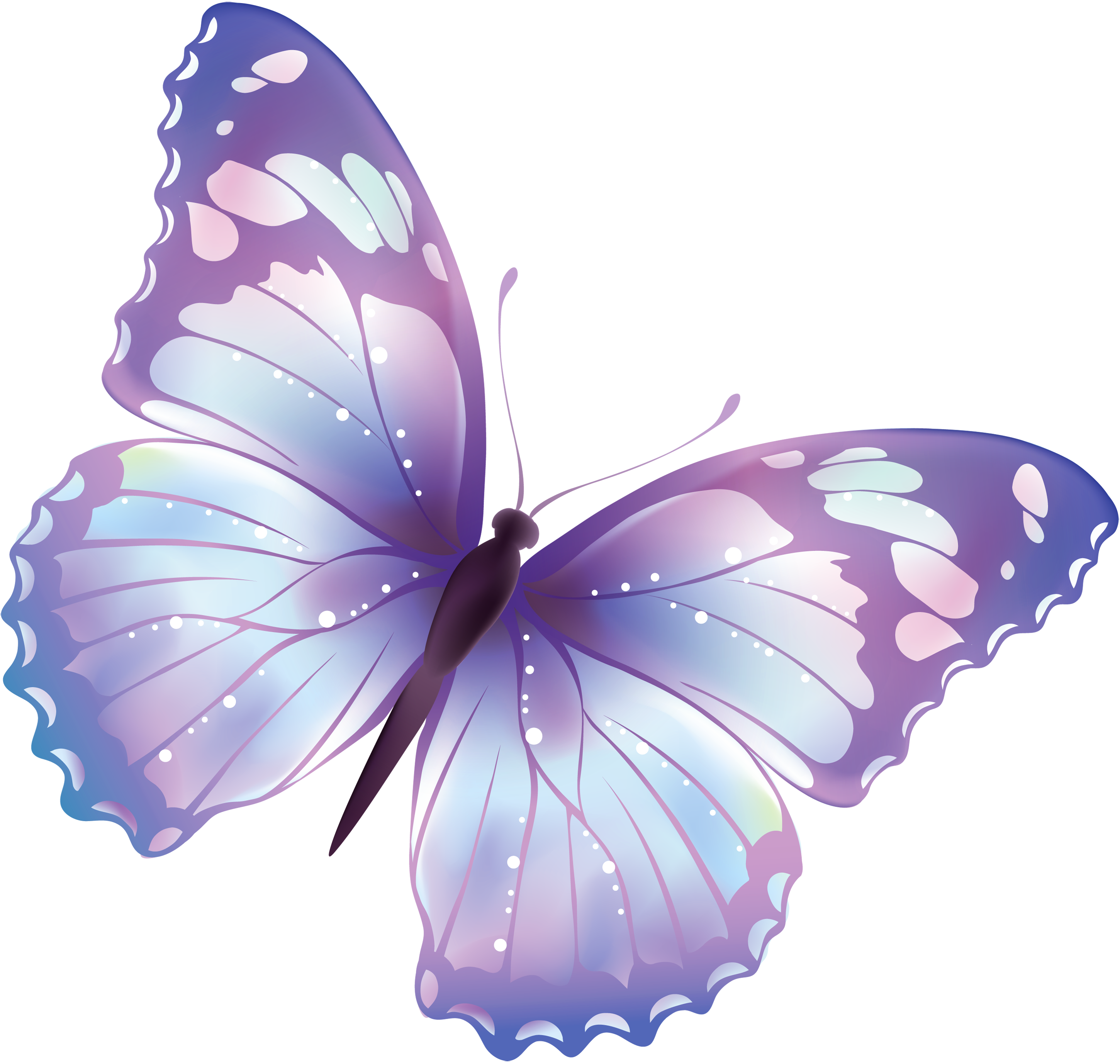 Butterfly Png 3 PNG Image