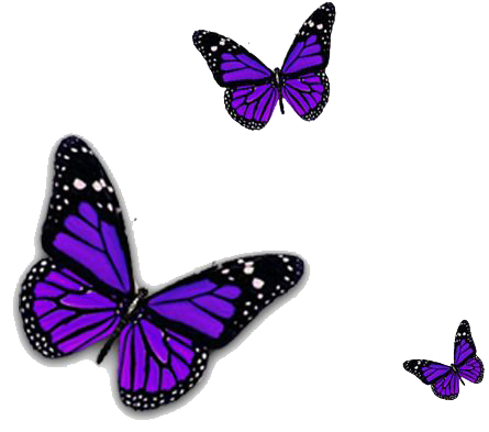 Purple Butterfly Transparent Image PNG Image