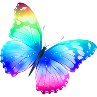 Colorful Butterfly Png Image PNG Image