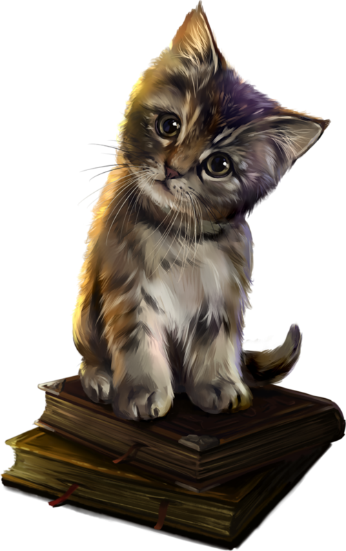 Medium Magic Savannah Academy Whiskers Cat Sized PNG Image