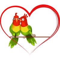Love Birds Image