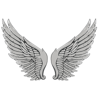 Wings Tattoos Image