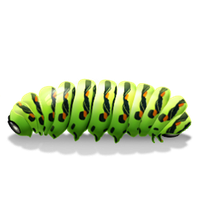 Caterpillar Transparent PNG Image
