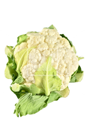 Cauliflower File PNG Image