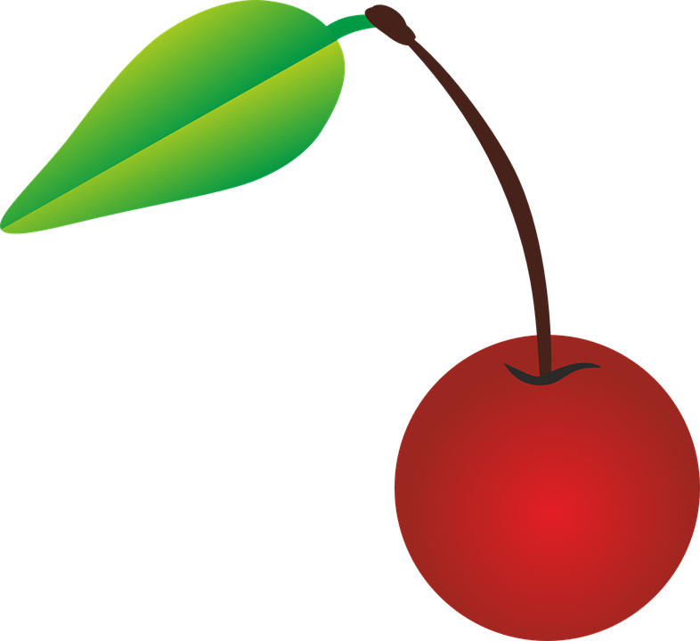 Cherry Vector Image PNG Image