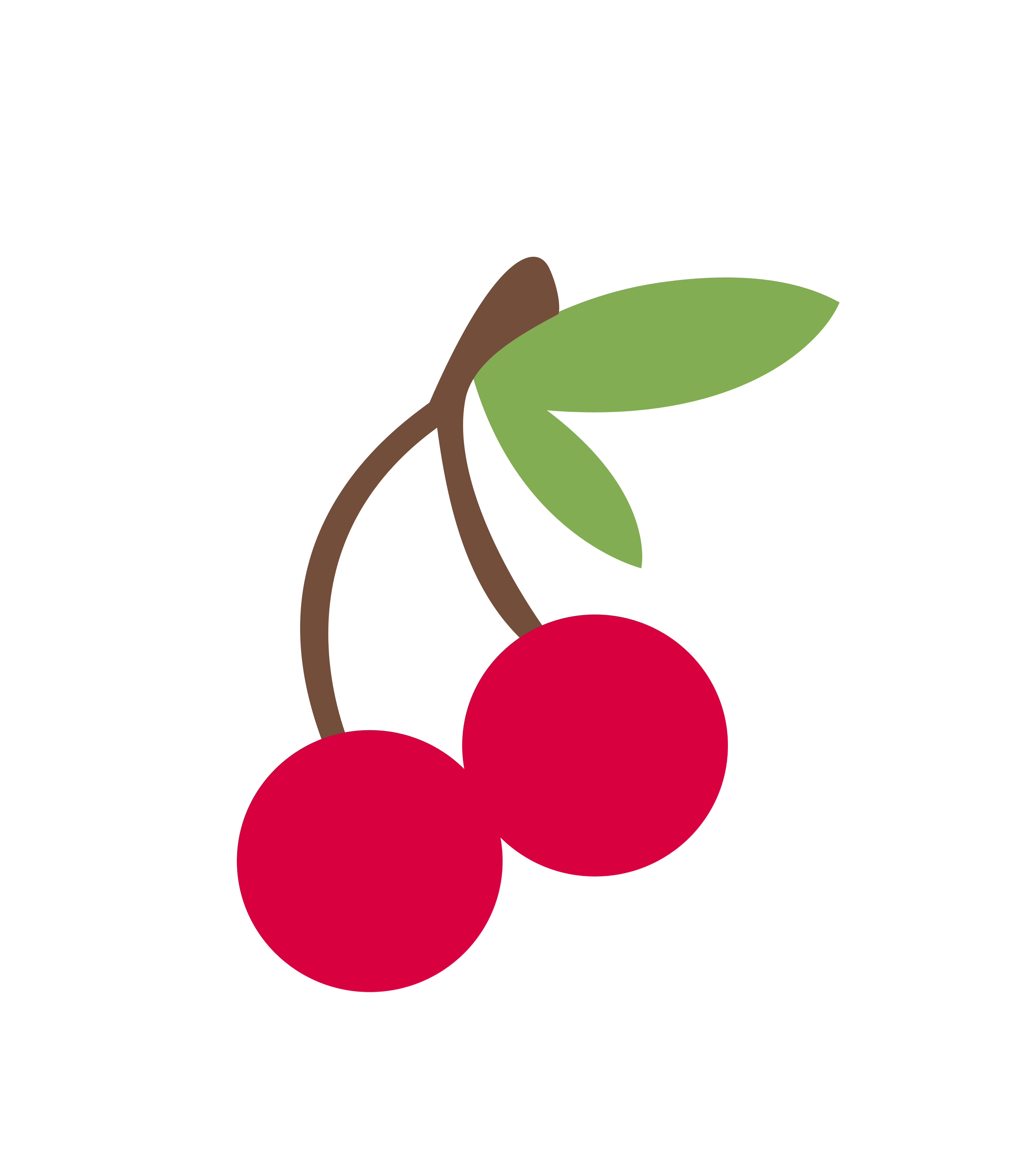 Cherry Vector Transparent Background PNG Image