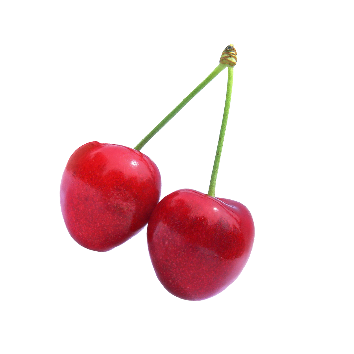 Cherry Fruit PNG Image