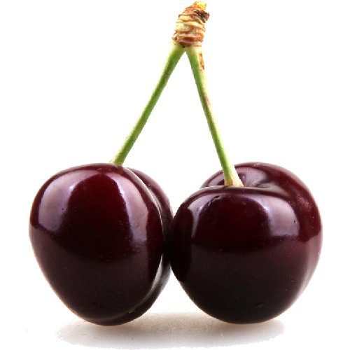 Black Cherry Clipart PNG Image