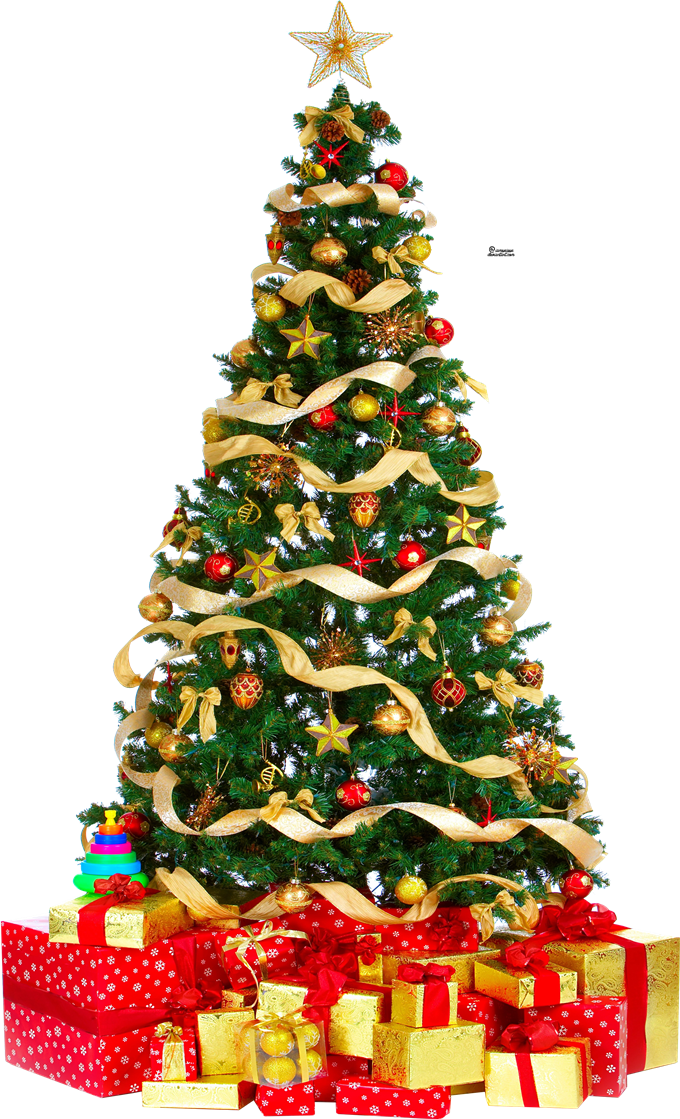 download christmas tree free download hq png image freepngimg download christmas tree free download