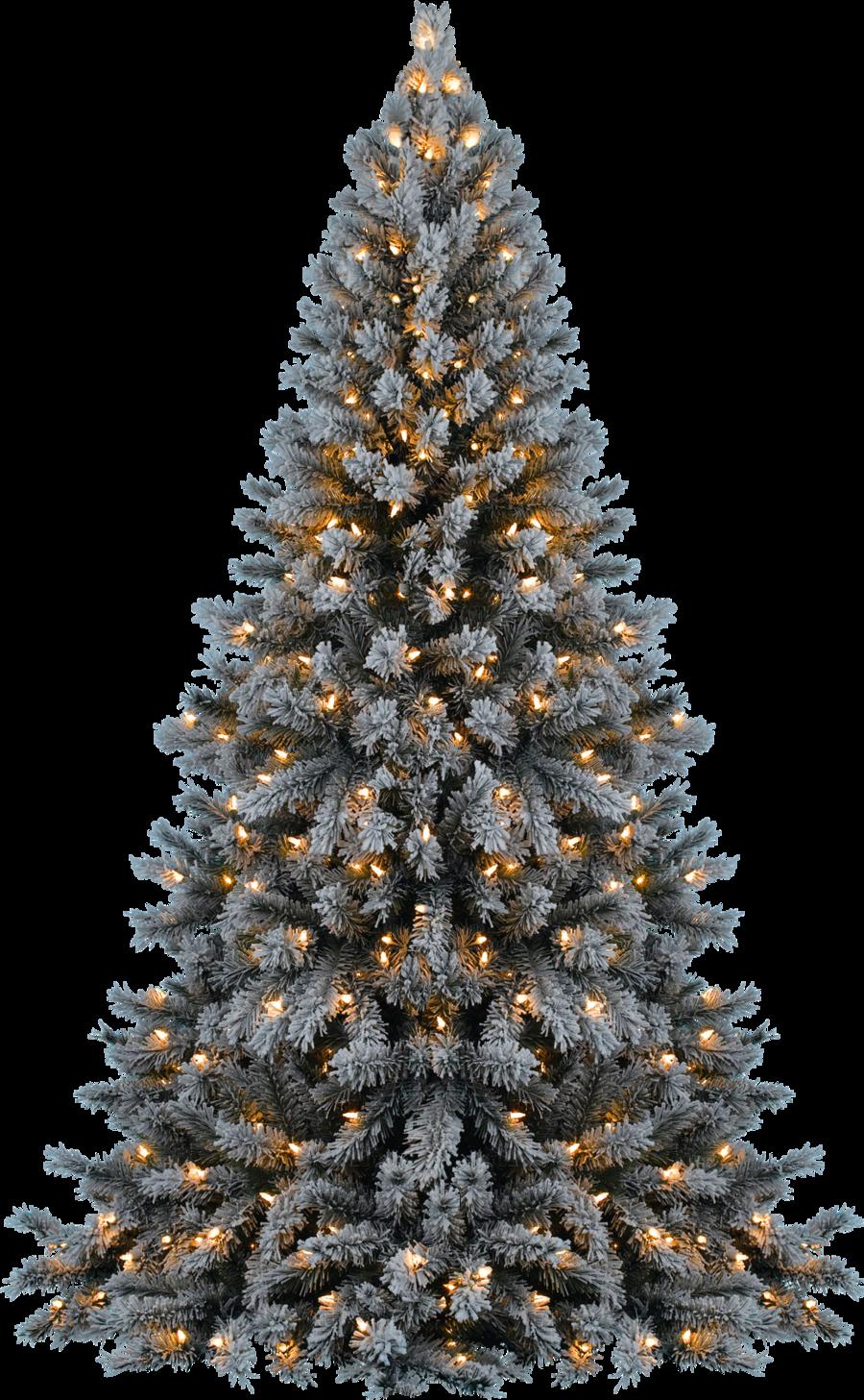 Download Christmas Tree Transparent HQ PNG Image   FreePNGImg