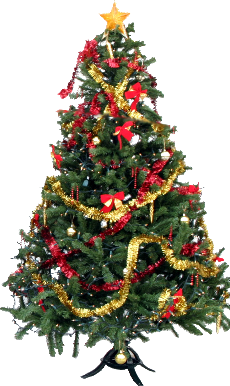 Christmas Tree Picture PNG Image