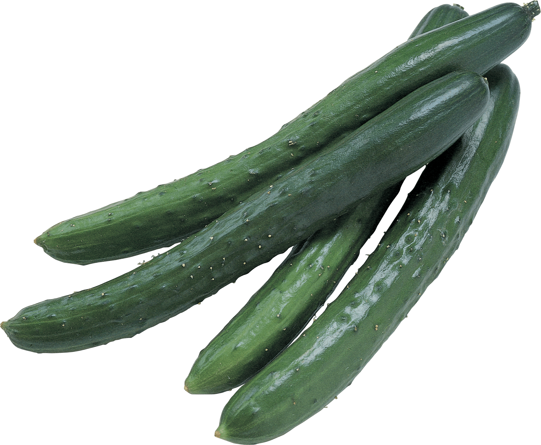 Cucumbers Png Image PNG Image