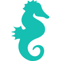 Cute Seahorse Picture PNG Image