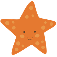 Cute Starfish Picture PNG Image