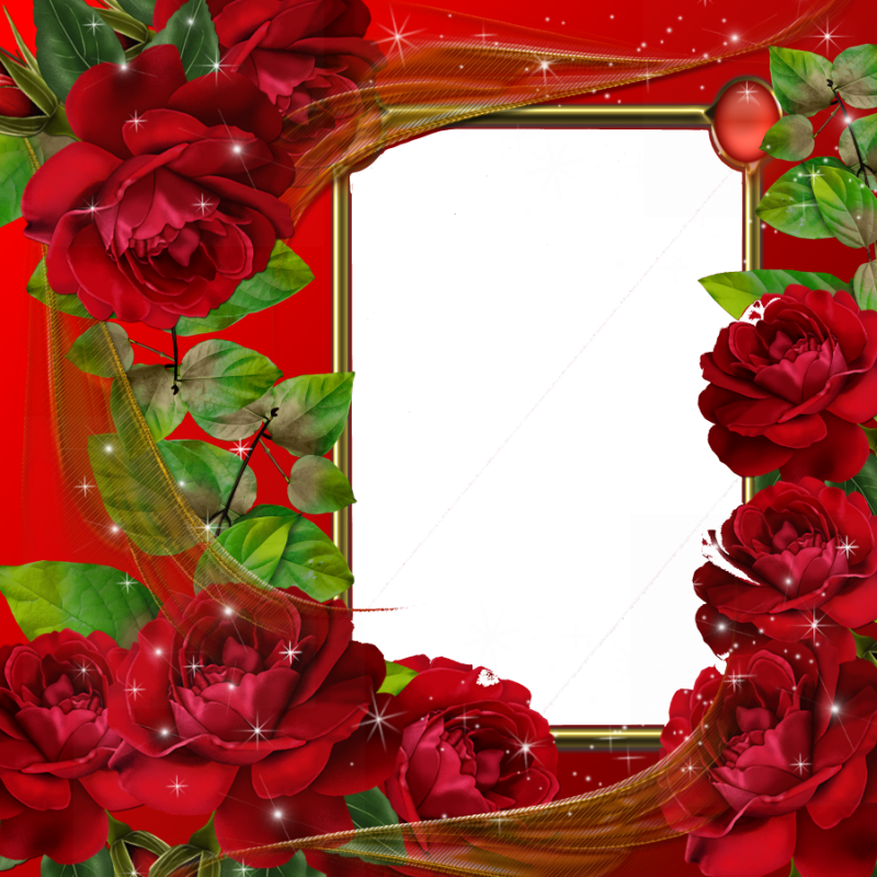 Red Flower Frame PNG Image