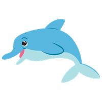 Dolphin Picture PNG Image