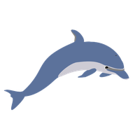 Dolphin Png Picture PNG Image