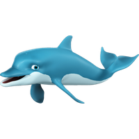 Dolphin Free Download Png PNG Image