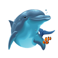 Dolphin Png Image PNG Image