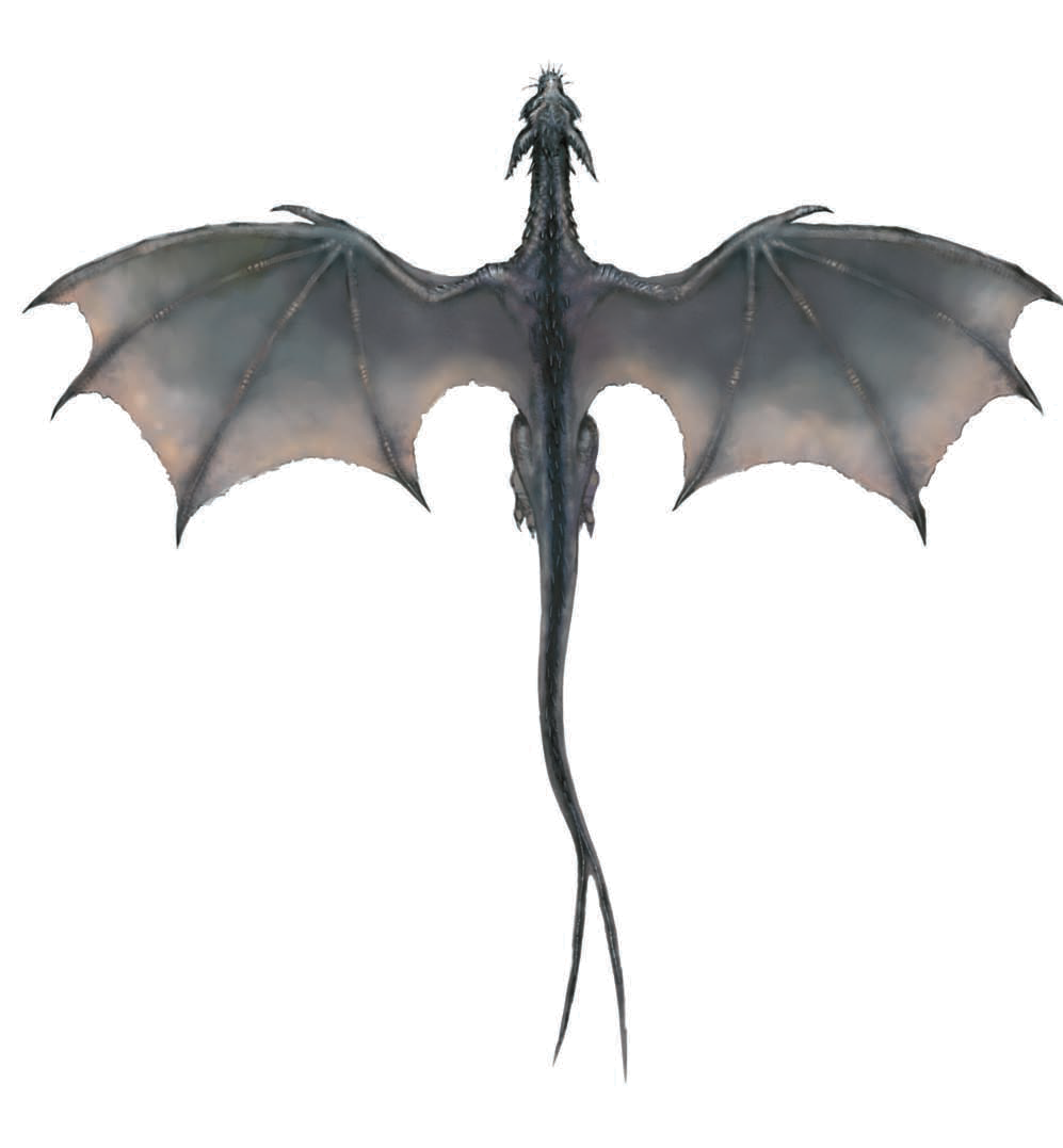 Flying Dragon Transparent PNG Image
