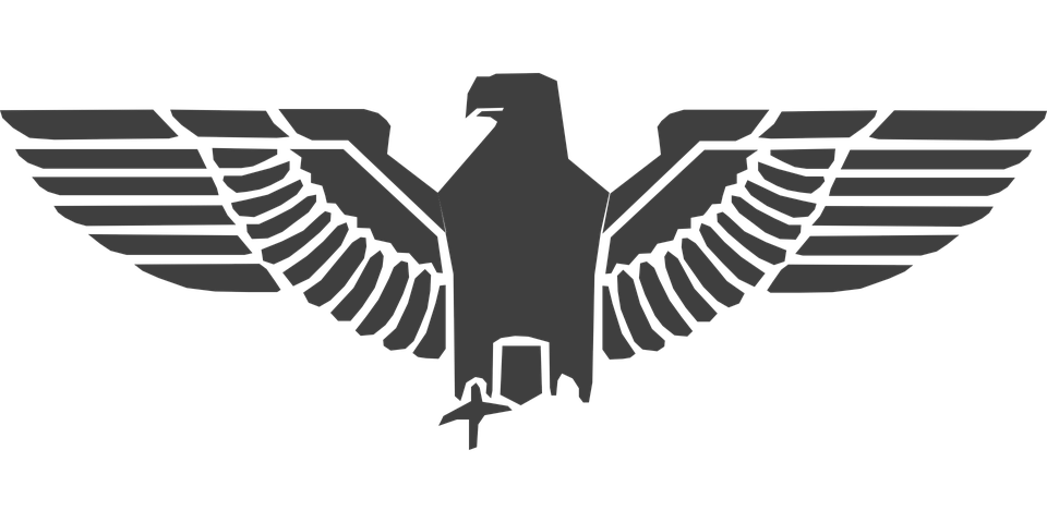 Eagle Symbol Transparent PNG Image