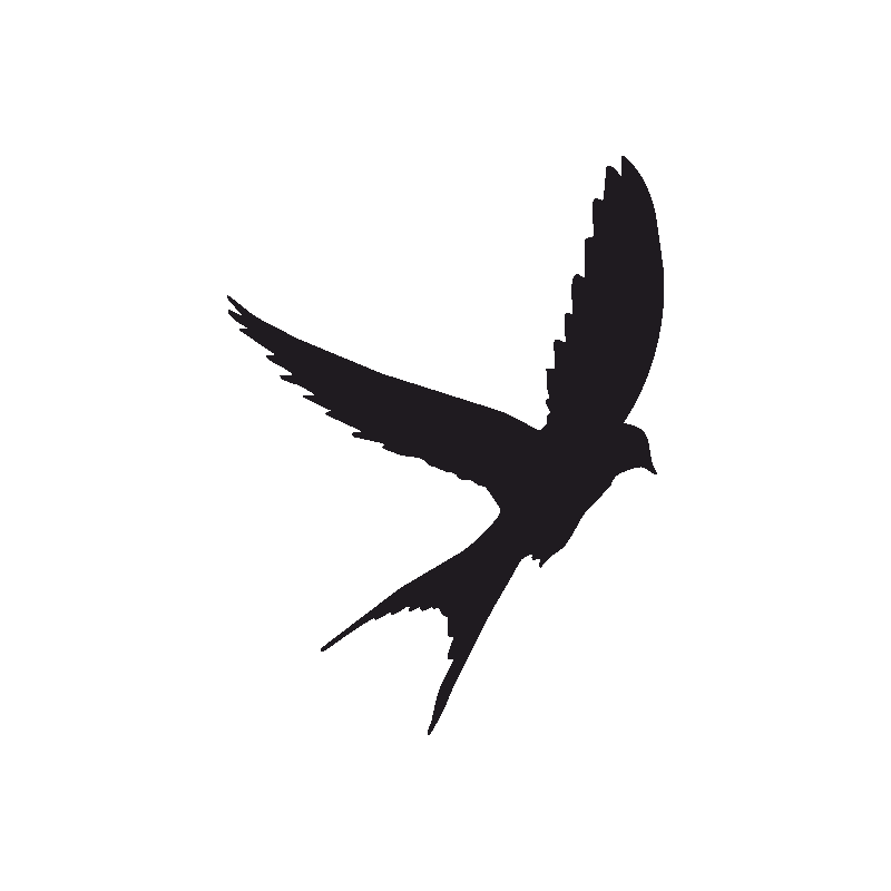 Tattoo Swallow Silhouette Bird Eagle Free Download PNG HD PNG Image