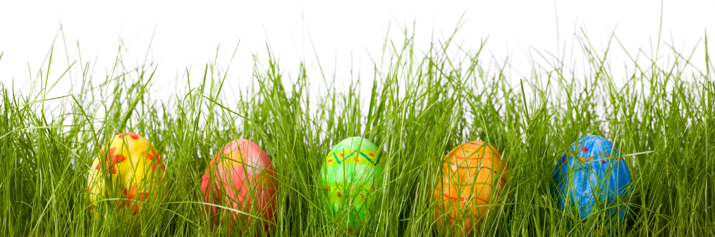 Beautiful Easter Eggs In Grass PNG Image