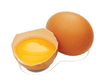 Cracked Egg Png Image PNG Image