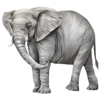 Download Elephant Free Png Photo Images And Clipart Freepngimg Elephant transparent background png image dimension: download elephant free png photo images